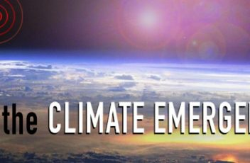 Climate Emergency Petition